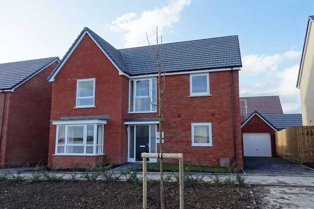 Thumbnail Detached house for sale in Amesbury Road, Longhedge, Salisbury