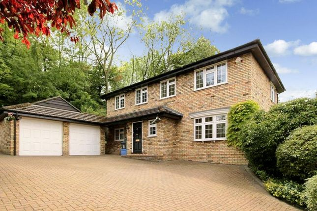 Thumbnail Detached house to rent in The Chestnuts, Felden, Hemel Hempstead