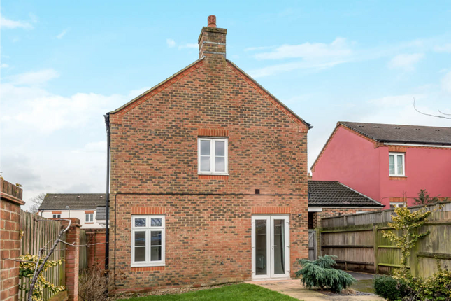 Thumbnail Detached house to rent in Small Close, Petersfield