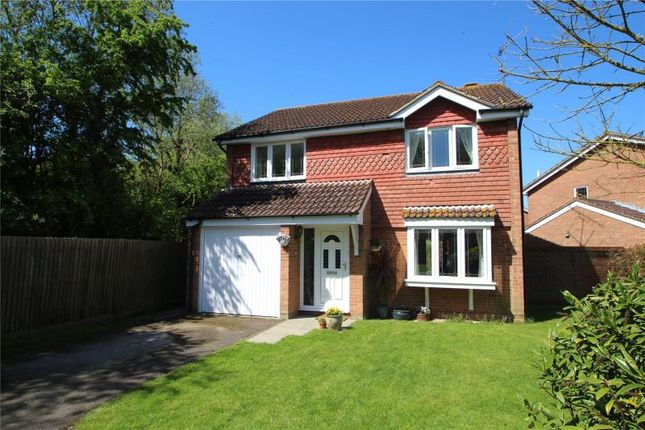 Thumbnail Detached house for sale in Swallows Green Drive, Worthing, West Sussex