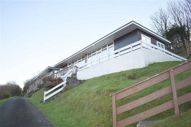 Thumbnail Property for sale in Summercliffe, Caswell, Swansea