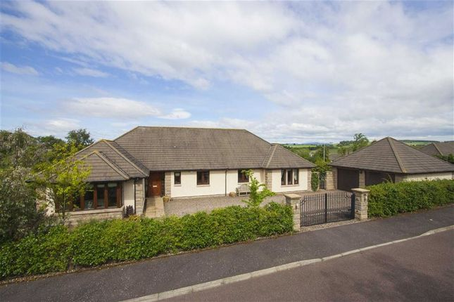 Thumbnail Detached bungalow for sale in 4, Craigie Hill, Drumoig, Leuchars, Fife