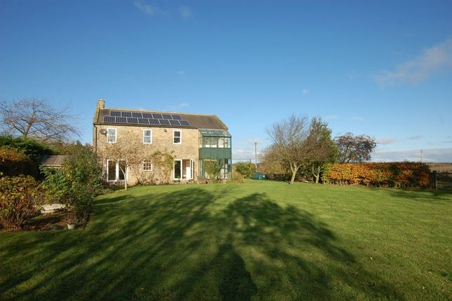 Thumbnail Detached house to rent in Kirkharle Cottages, Kirkharle, Newcastle Upon Tyne