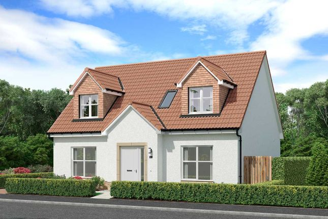 """Thumbnail Detached house for sale in """"Gainford"""" at Shawfair, Danderhall, Midlothian"""