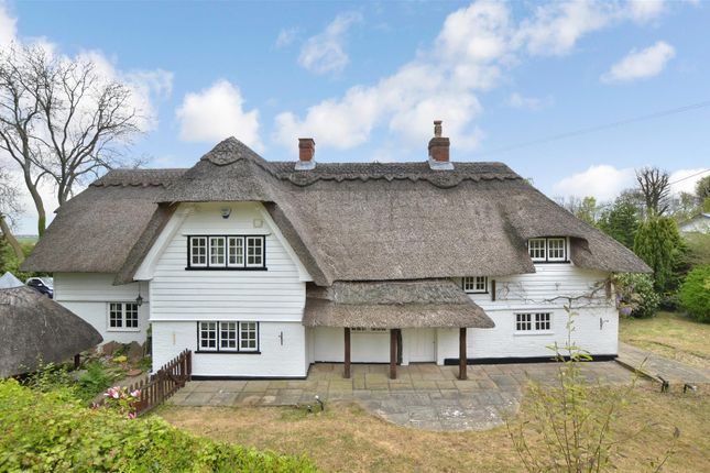 Thumbnail Equestrian property for sale in Church Road, Hartley, Longfield