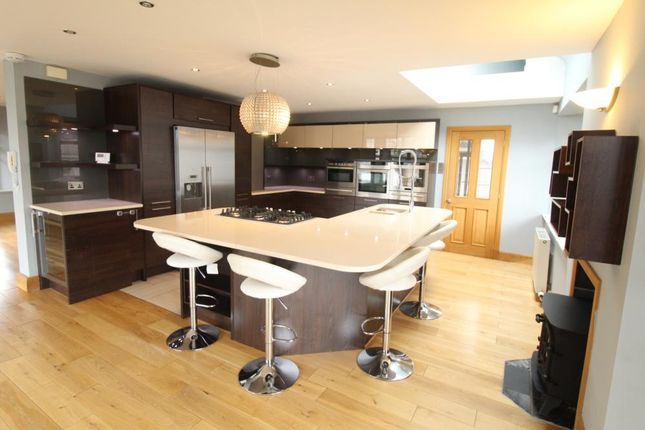 Thumbnail Town house to rent in Queens Avenue, Aberdeen