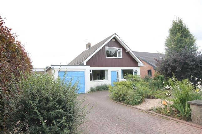 Thumbnail Detached bungalow for sale in Beech Way, Upper Poppleton, York