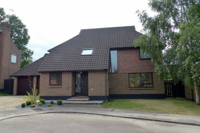 Thumbnail Detached house for sale in Higher Mead, Lychpit, Basingstoke