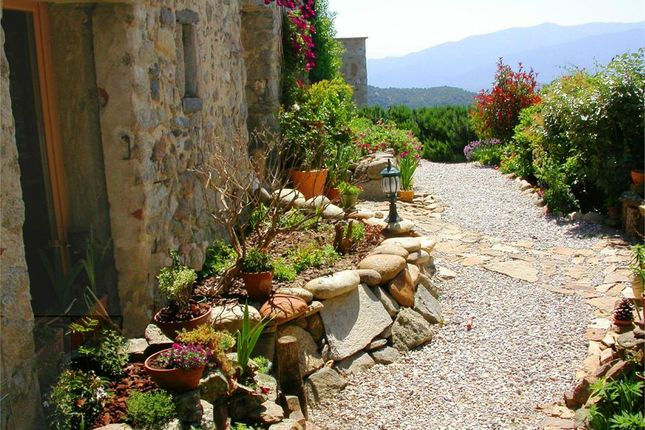 Property for sale in Vinca, Languedoc-Roussillon, 66320, France