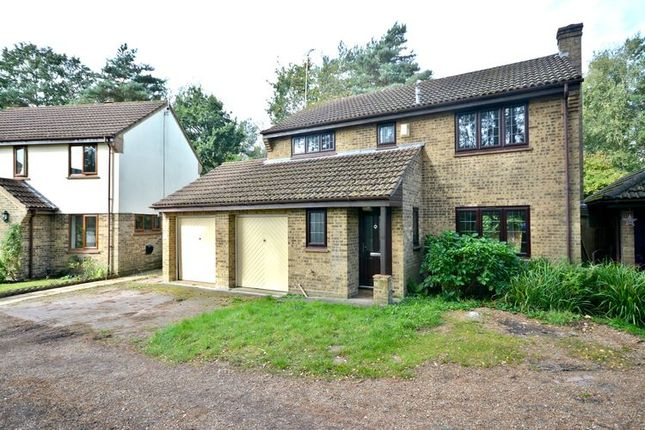 Thumbnail Detached house to rent in Micheldever Way, Forest Park, Bracknell