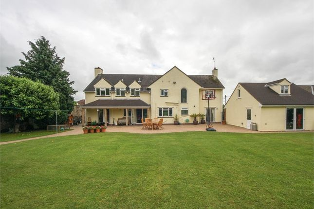 Thumbnail Detached house for sale in Meadoway, Hannay Road, Cheddar, Somerset