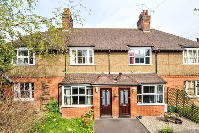 Thumbnail Terraced house to rent in Holyoake Terrace, Sevenoaks