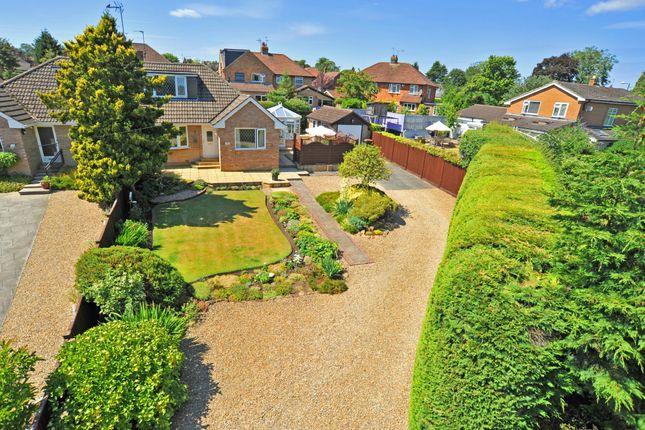 Thumbnail Semi-detached bungalow for sale in Plompton Grove, Harrogate