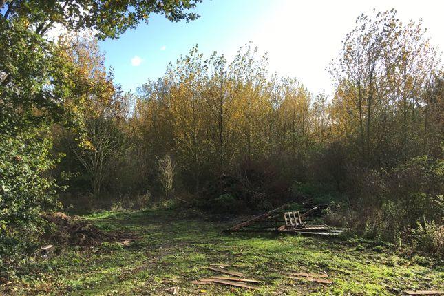 East Tuddenham, Dereham, Norfolk NR20