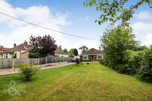Thumbnail Detached bungalow for sale in Brundall Road, Blofield, Norwich