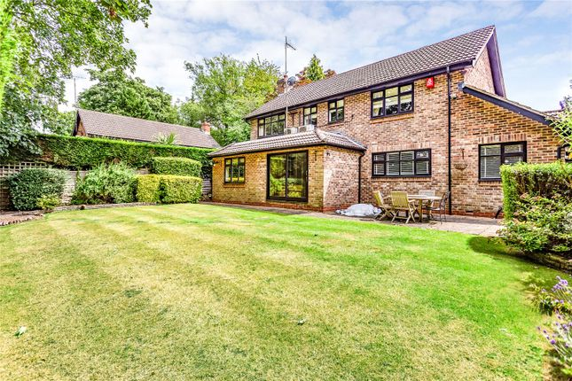 Thumbnail Detached house for sale in Florida Close, Bushey Heath, Hertfordshire