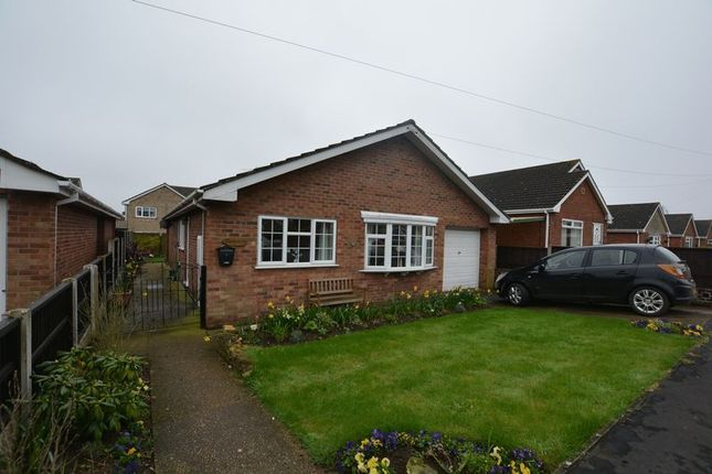 Thumbnail Detached bungalow to rent in Mount Avenue, Winterton, Scunthorpe