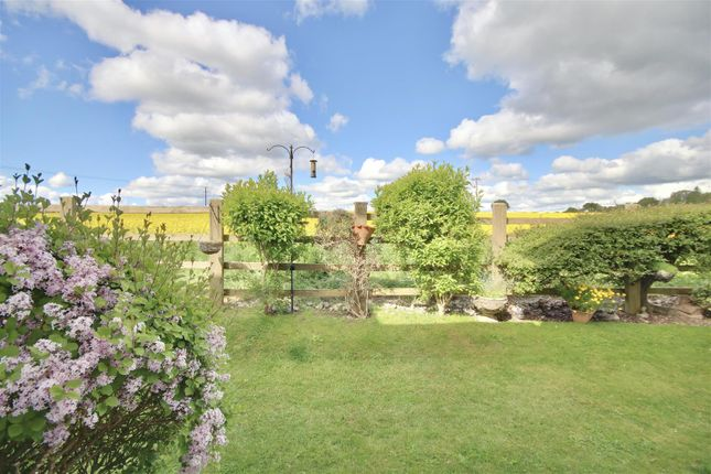 Thumbnail Terraced house to rent in Swallow Court, East Meon Road, Clanfield