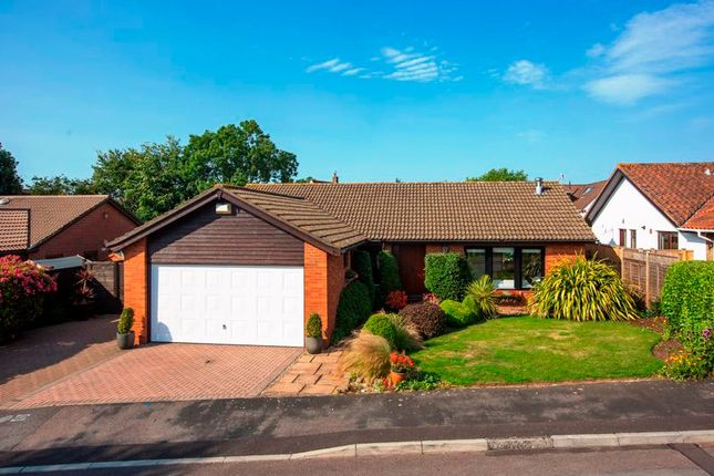 Thumbnail Detached bungalow for sale in Karen Drive, Backwell, Bristol