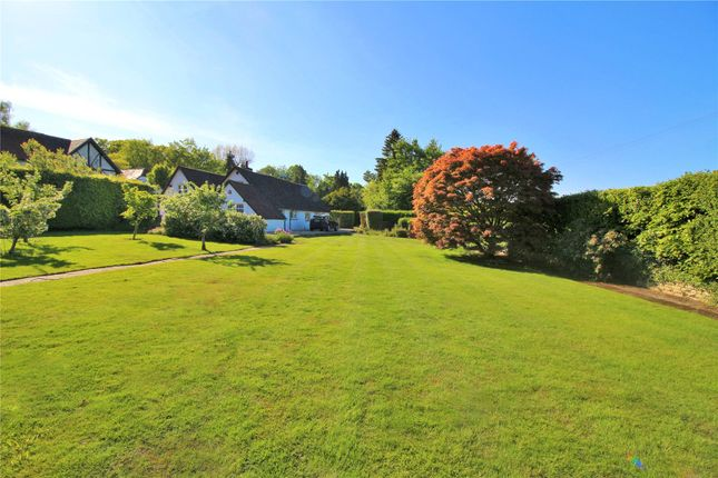 Thumbnail Detached bungalow for sale in Cobden Hill, Radlett, Hertfordshire