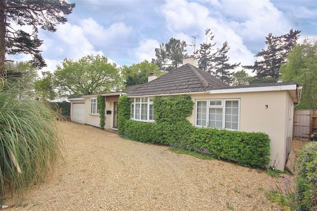 Thumbnail Bungalow for sale in Woolsbridge Road, St Leonards, Ringwood