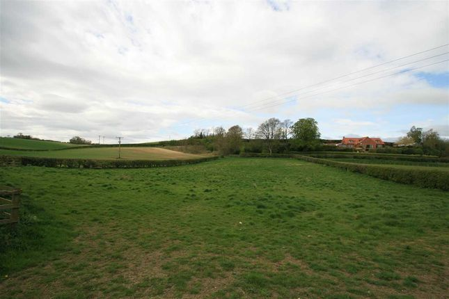 Thumbnail Land for sale in Land At Wold House Stables, Langton Road, Malton