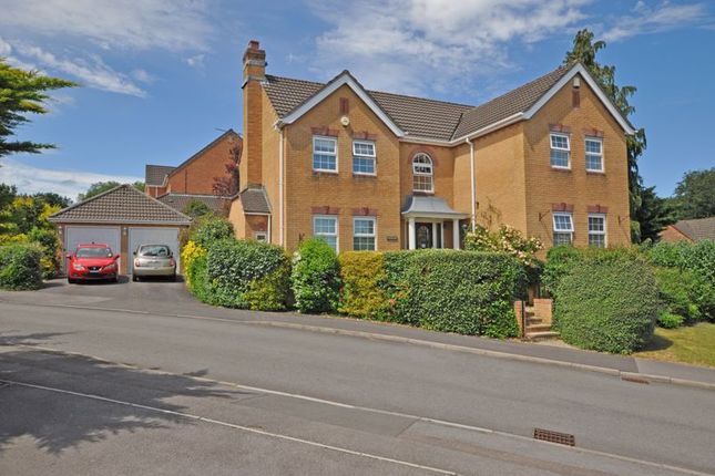 Thumbnail Detached house for sale in Executive Family House, Great Oaks Park, Newport