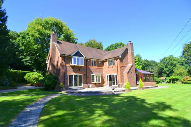 Thumbnail Detached house to rent in Embley Lane, East Wellow, Romsey
