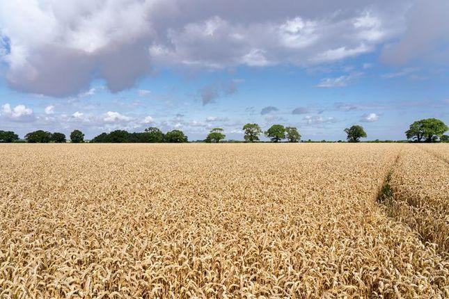 Thumbnail Commercial property for sale in Lot 3, Rectory Farm, Fakenham Road, Bale, Fakenham