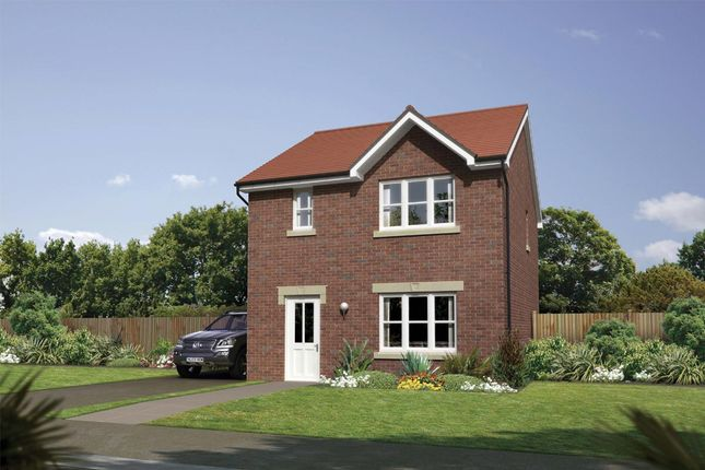 """Thumbnail Detached house for sale in """"Castlevale"""" at Cherrytree Gardens, Bishopton"""