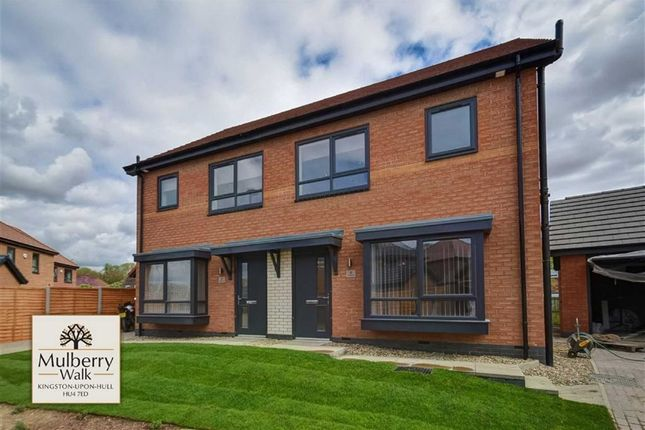 Thumbnail Semi-detached house to rent in Mulberry Lane, Hull