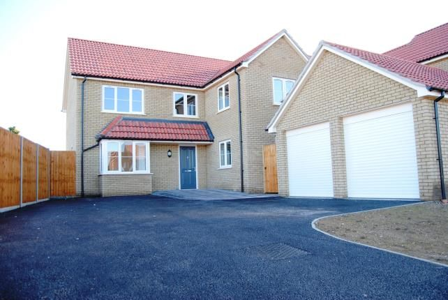 Thumbnail Property for sale in Rowan Close, Watlington, King's Lynn