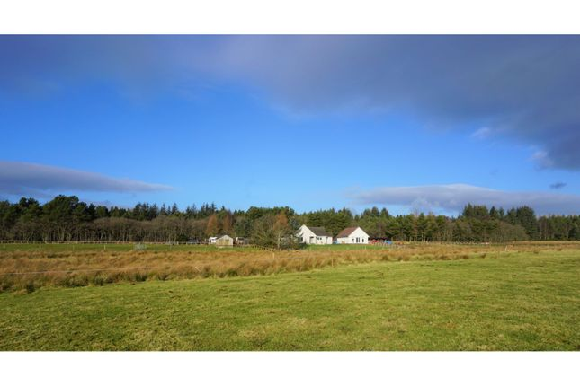 Thumbnail Detached bungalow for sale in House, Fortrose