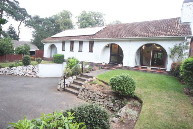 Thumbnail Detached bungalow for sale in Hollycroft, Hinckley