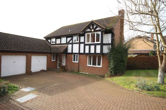 Thumbnail Detached house to rent in Fletcher Gardens, Binfield, Bracknell