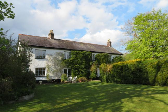 Thumbnail Detached house for sale in Winkleigh