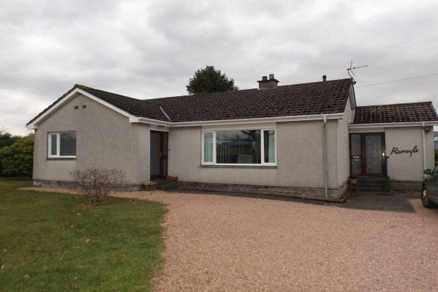 Thumbnail Bungalow to rent in Auchterarder