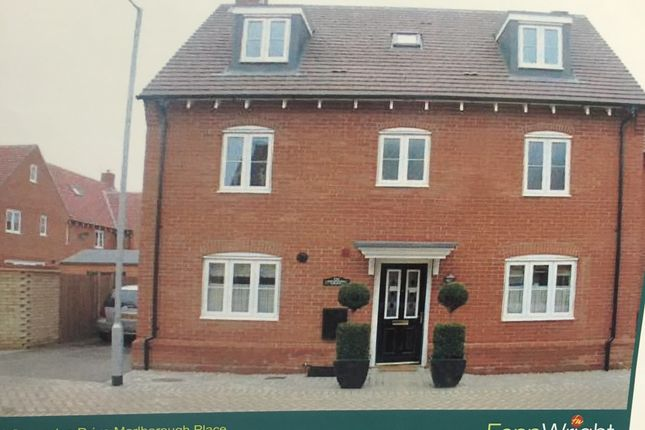 Thumbnail Detached house to rent in Secundus Drive, Colchester, Essex