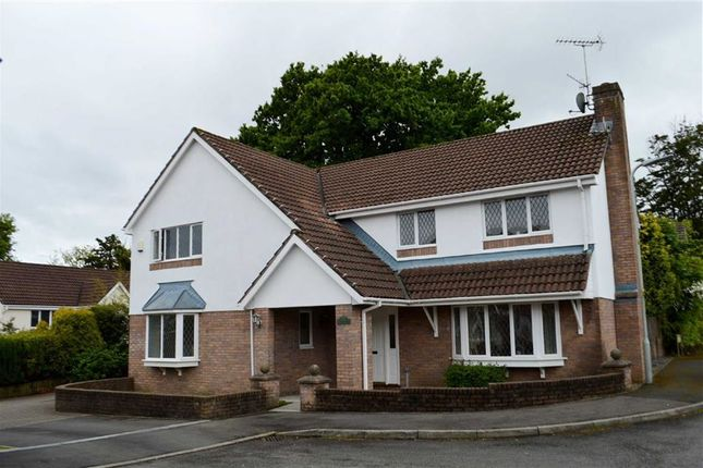 Thumbnail Detached house for sale in Roger Beck Way, Swansea