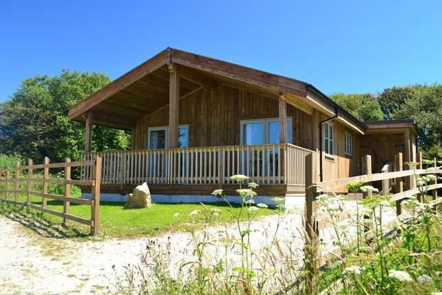 Thumbnail Lodge for sale in The Cornish Birds Of Prey Centre, St Columb, Cornwall