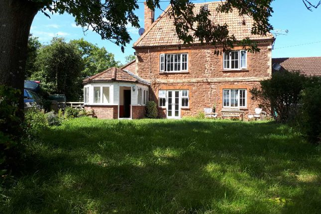 Thumbnail Detached house to rent in Chilton Trinity, Bridgwater