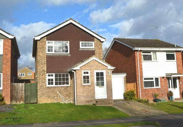 Thumbnail Detached house for sale in Hook, Hampshire