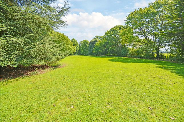 Thumbnail Detached house for sale in Mill Road, Winfarthing, Diss
