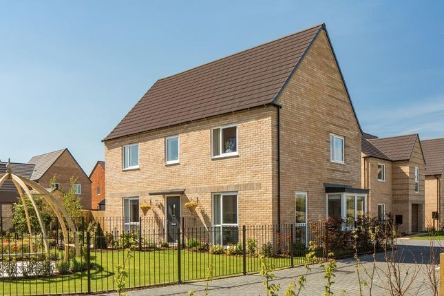 """Thumbnail Detached house for sale in """"Cornell"""" at Wellington Road, Northstowe, Cambridge"""
