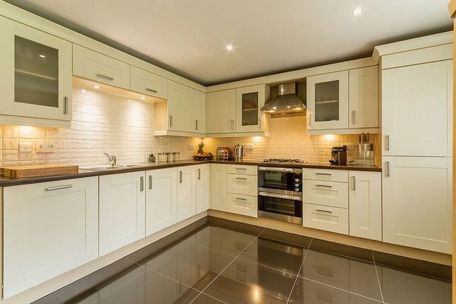 Thumbnail Detached house for sale in Kirk Place, Bo'ness