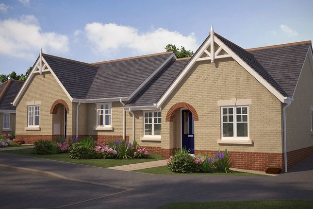 Thumbnail Detached bungalow for sale in Farriers Road, Stowmarket