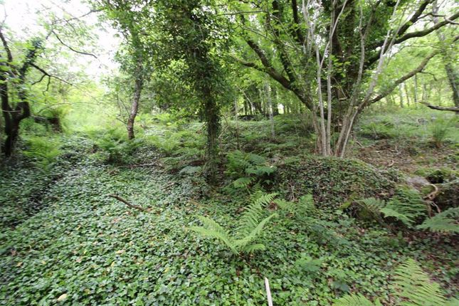 Land, Corrie Burn, Ullapool, Ross-Shire IV26