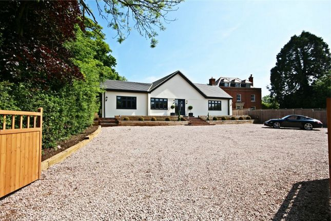 Thumbnail Detached bungalow for sale in Harlow Common, Harlow, Essex