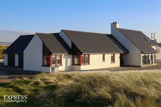 Thumbnail Detached house for sale in Point Road, Limavady, County Londonderry
