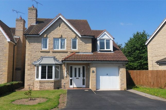 Thumbnail Detached house to rent in Hall Drive, Worksop, Nottinghamshire